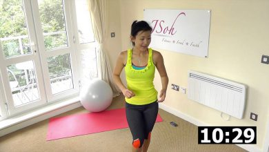 20 Minute Beginner Stability Swiss Ball Exercises